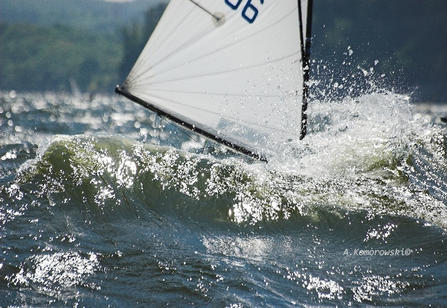 Zagle Kielce: Eliminacje do Ogólnopolskiej Olimpiady Młodzieży, Gdynia - Łeba 2008